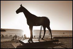 trojan horse photo