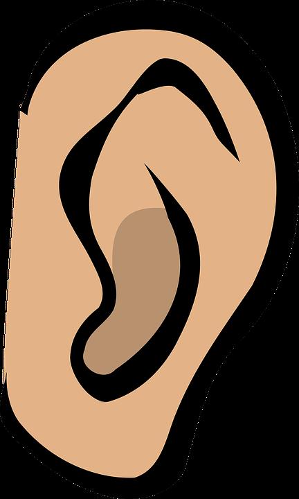 hear - listening skills