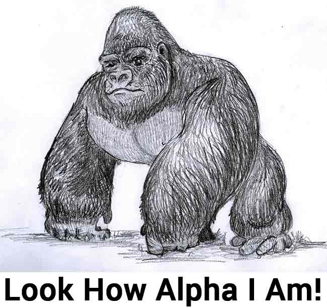 alpha male posturing