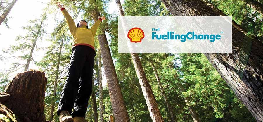 corporate environmental lies