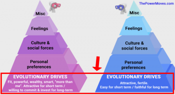 hierarchy of sexual needs