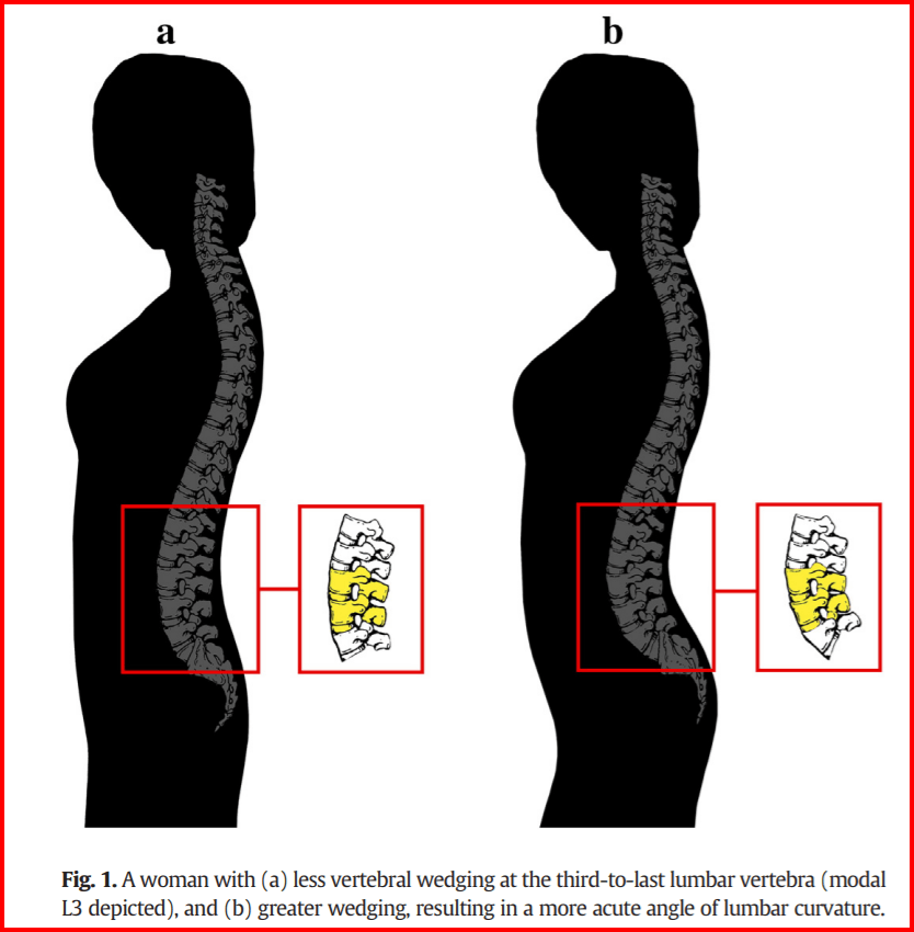sexy posture for women