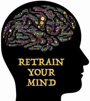 brain developmnent