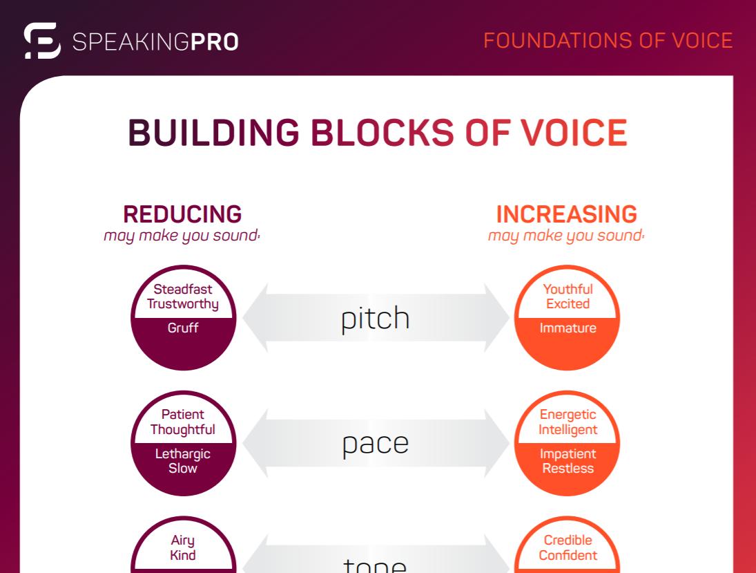 Speaking Pro executive summary